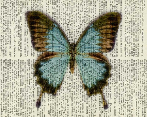 Vintage blue and brown butterfly printed on old page by - Brown butterfly meaning money ...