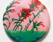 Pocket Mirror - Indian Paintbrush Floral Pocket Mirror