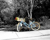 Bisikleta \/ Bicycle 8x12 Fine Art Print