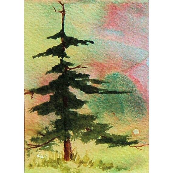 Aceo Fir Tree Original Watercolor Painting