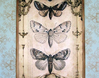 Vintage Feel Butterfly Gift Tags