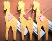 10 Giraffes Baby Shower Seed Favors - Plantable Seed Paper Personalized - Kids Birthday - Zoo Wedding - with Flower Seeds - Gift Box Option