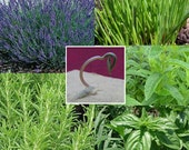 Add HERB seeds to any order