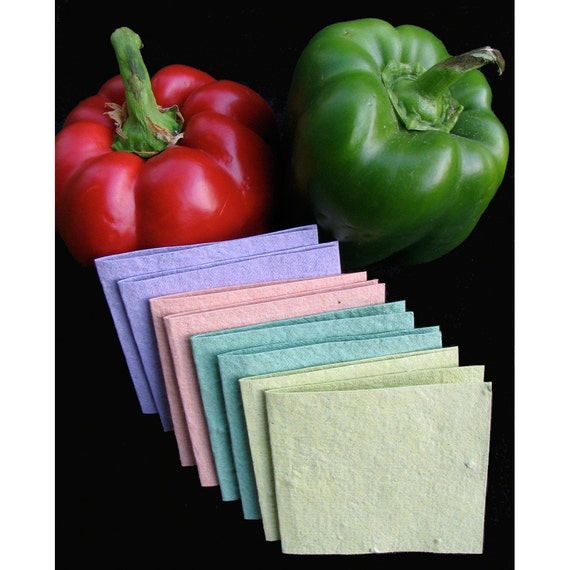 VEGETABLE Garden in a Card, Recycled Paper Note Card Set with Seeds