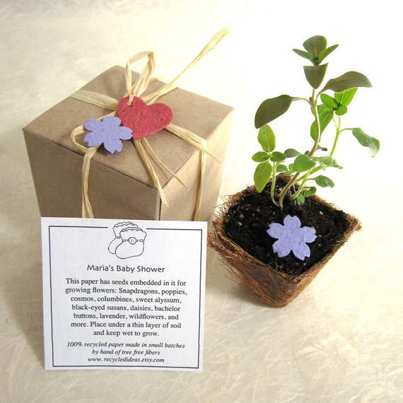 flower seed wedding favors 30 flower seed wedding favors box planting kit with plantable 4208