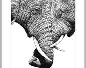 Wildlife Giclee Fine Art Print of African Elephants