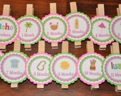 Luau Photo Clips. Tiki Party.Luau. Photo Clips.Beach.  Picture Banner. Set of 13. Newborn. 12 months. First Birthday. Hot Pink. Bright Green
