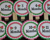 Watermelon Photo Clips. Watermelon Party. Photo Clips. Picture Banner. Set of 13. Newborn. 12 months. First Birthday. Green. Pink