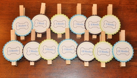 Puppy Photo Clips. Dog Photo Clips.Photo Banner. First Birthday.Dog bone. Dogbones. Blue. Green. Brown. Set of 13