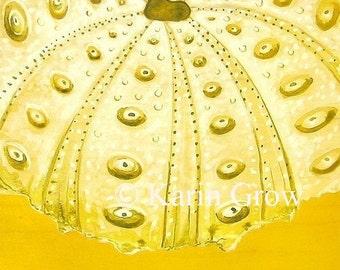 Lemon Urchin--8x8