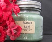 TOMATO LEAF SOY Candle - green, berry