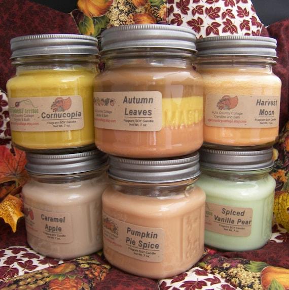 8 SOY CANDLES - You CHOOSE - Vanilla, Cinnamon, Apple, Pumpkin, Fresh, Clean, Citrus, Floral, Fruit, Spice, Herbal