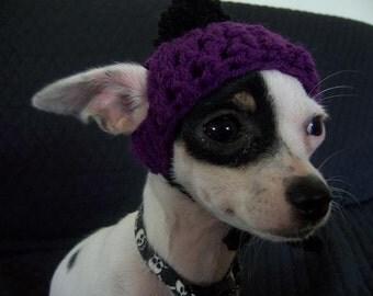 Crocheted Chihuahua Beanie XXS