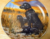 Labrador Retrievers Collector's Plate , Reduced