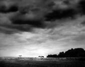 Storm On Horizon- 8x8 Fine Art Print