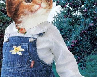 Apple-Picking Kitty notecard