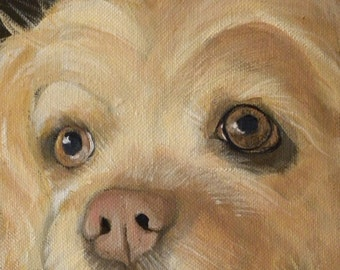 Custom pet portrait from your photos acrylic on canvas