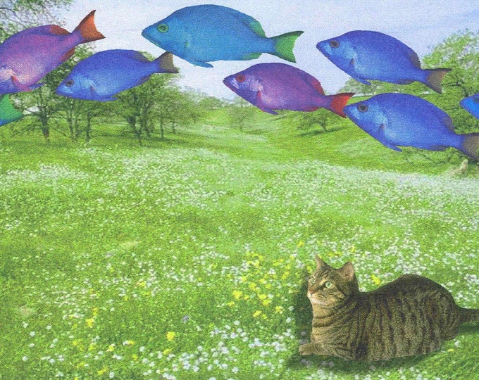 Fish Are Jumping blank greeting card