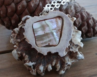 Ocean Rainbow Abalone Shell Inlaid Deer Antler Pendant on Chain No Cruelty Naturally Shed