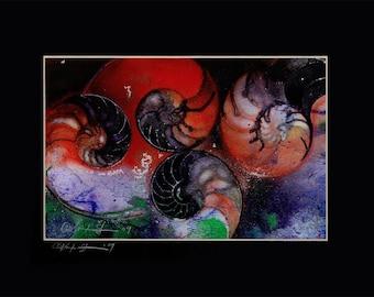 "Sea Shell Abstract painting, Ocean, Nautilus Shell Art, in Mat, Original Contemporary Modern ""Nautilus Shells 72""  Kathy Morton Stanion EBSQ"