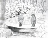 Birds in a Garden Graphite Pencil Drawing