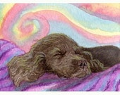 Sussex Spaniel dog puppy 8x10 art print - Relaxation studies