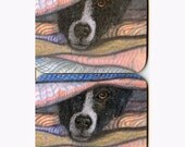 2 x Border Collie dog coasters - hideout
