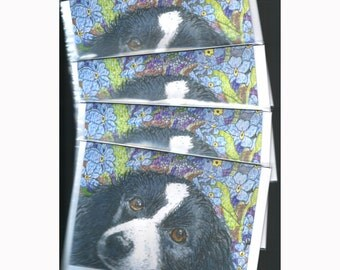 4 x Border Collie dog greeting cards - Forget me not