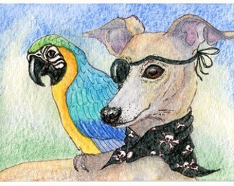 Whippet greyhound dog parrot - Talk like a Pirate Day - signed art print