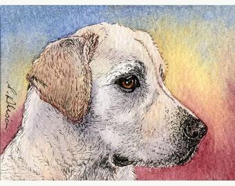 Labrador retriever dog 8x10 signed art print
