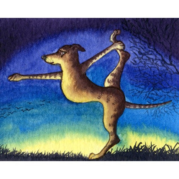 Whippet greyhound dog 8x10 yoga in the morning print