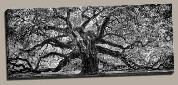 "Angel Oak Canvas - Charleston, SC - Gallery Wrapped Canvas on 3/4"" deep frame"
