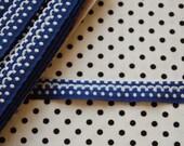 vintage blue and white dots trim border ribbon