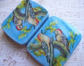 Vintage Swiss Tin Printed with Woodpeckers - 6 cm X 4.75 cm