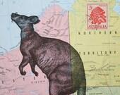 Kangaroo Print on Australia Map  with Vintage Postage Stamp - 5 x 7