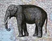 Elephant Print on Map of Thailand and Burma - 5 x 7 Asian Elephant Print