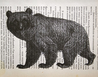 Bear Print on Russian Book Page - 5 x 7 Bogey the Bear