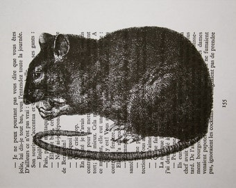 Rat Print on Vintage French Book Page - 5 x 7 Cute Rat Book Page Print - Rat Art