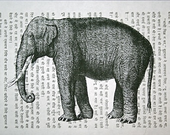 Asian Elephant Print on Vintage Hindi Book Page - 5 x 7 Book Page Print of India Elephant Art