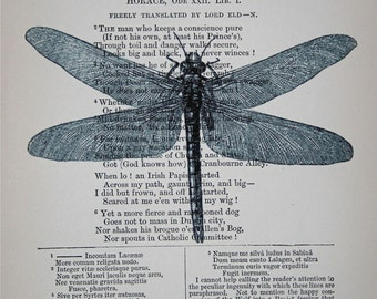 Dragonfly Print on Vintage Book Page - 5 x 7 - Book Page Print - Outlander Dragonfly - Insect Print