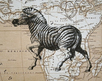 Zebra Print on Map of Africa - 5 x 7 Zebra Map Print