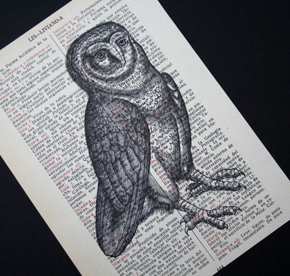 Owl Print on Vintage Spanish Dictionary Text - 5 x 7