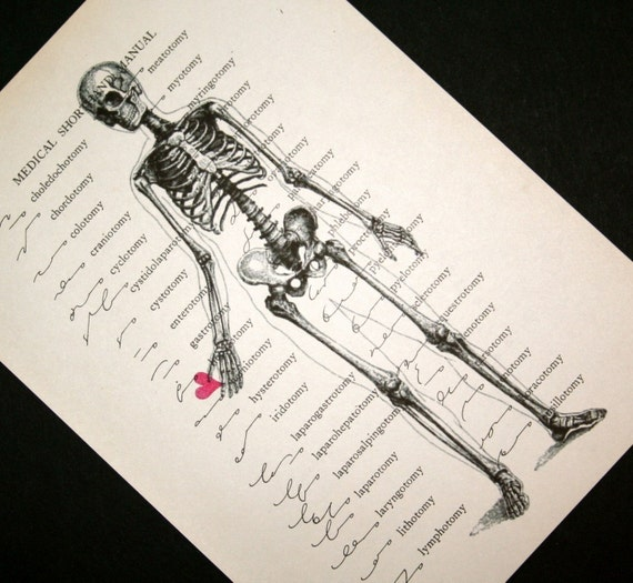 Skeleton Man in Love on Vintage Medical Shorthand Text - 5 x 7