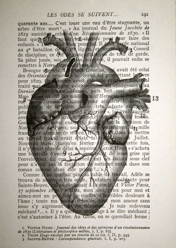 Anatomical Heart Print - Human Heart Anatomy Print - Anatomy Art - Anatomical Print - Valentines Day Gift - Heart Art