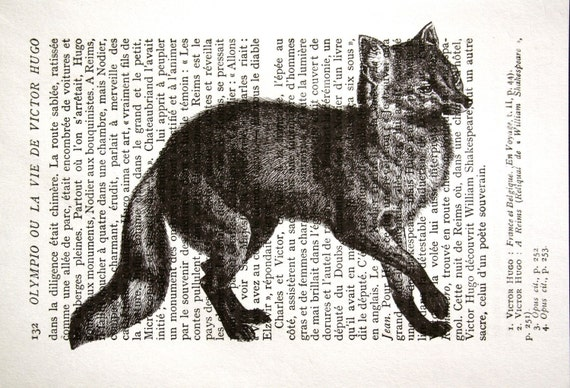 Fox Print on Vintage French Book Page - 5 x 7 Slinky Fox Book Page Print - Animal Print - Wildlife Print