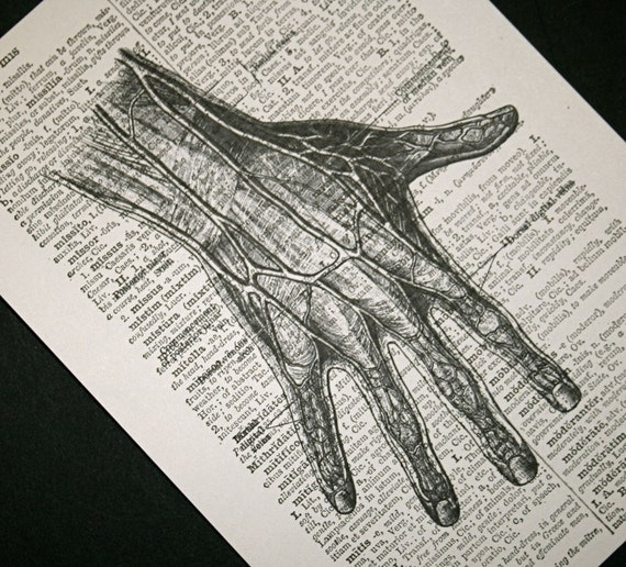 Hand and Fingers Print on Vintage Latin Dictionary - 5 x 7 Anatomical Hand Print