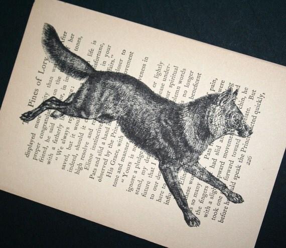 Wolf Print on Vintage Book Page - 5 x 7 Wildlife Print, Wolf Art
