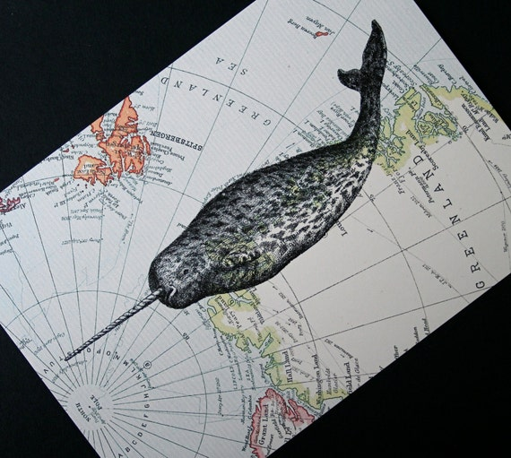 Items Similar To Narwhal Print On Arctic Map