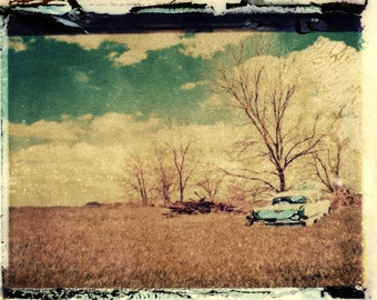 Field - Polaroid transfer photograph