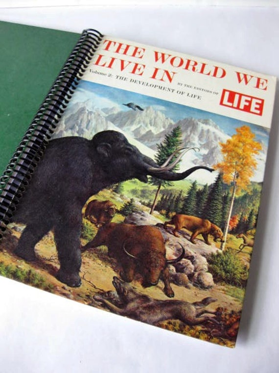 LIFE: The World We Live In, The Development of Life, Recycled Book Journal